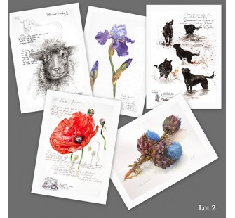 Lot 2 : cartes d'art imprimées